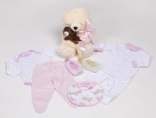 Cesta de Maternidade Teddy Bear in Pink na internet
