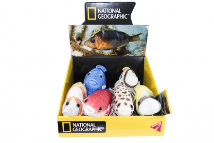 National Geographic SORTIMENTO Fish - 770792