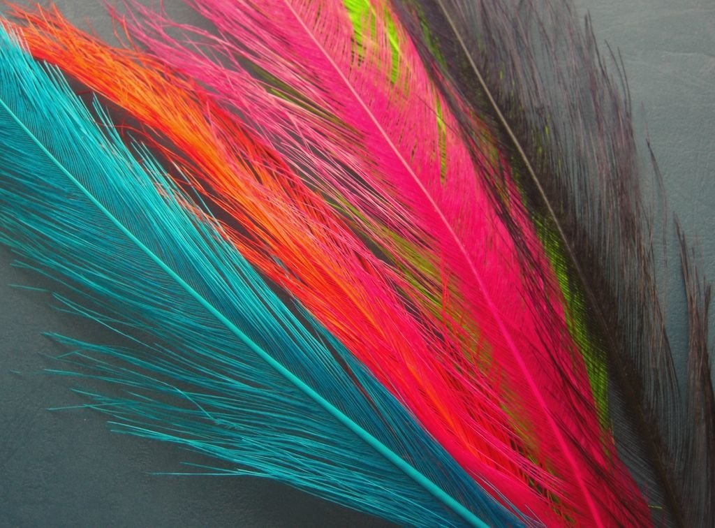 Spey Feathers - Feathers and FLies