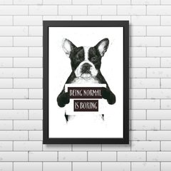 PLACA BEING NORMAL IS BORING - comprar online