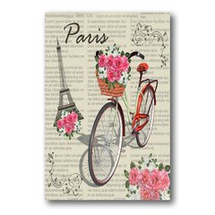 PLACA PARIS BIKE