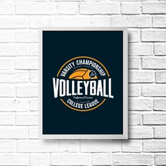 PLACA VOLLEYBALL - comprar online