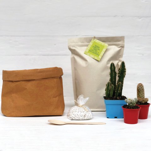 Kit de Siembra Jardín en Eco Bag Café