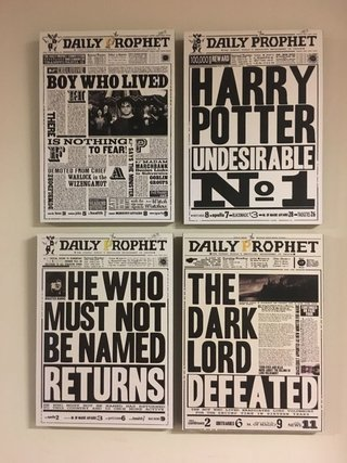 4 Cuadros Harry Potter Diarios