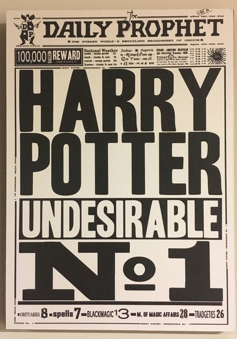 Cuadro Harry Potter Undesirable Nº1