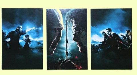 Cuadros - Tríptico Harry Potter vs Voldemort