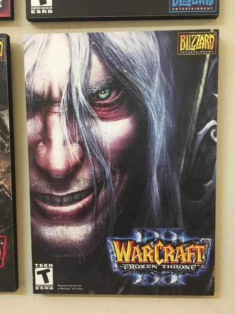 Cuadro Warcraft 3: The Frozen Throne - comprar online