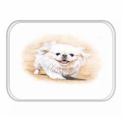 Tapete cão Chihuahua