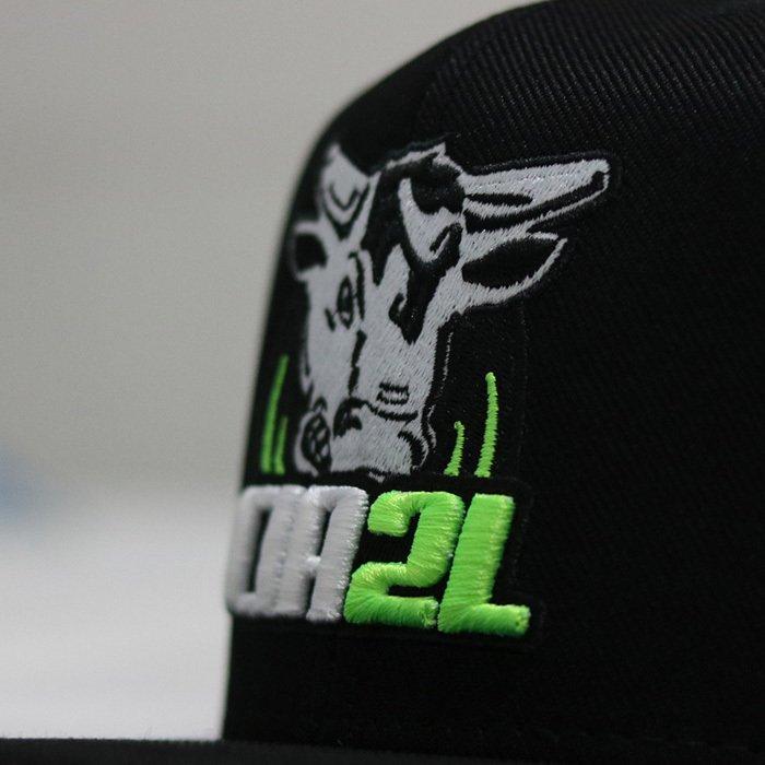 34afc7b72c670 Boné Snapback Preto e Verde - Comprar em Cia 2L Bulls