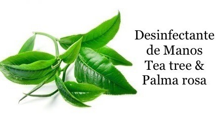 DESINFECTANTE DE MANOS TEA TREE & PALMA ROSA 60ml en internet