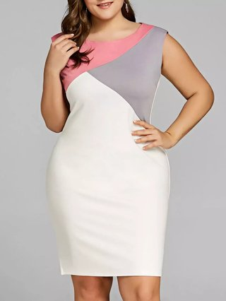 Plus Size Sleeveless Color Block Fitted Dress
