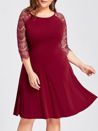 Plus Size Lace Openwork Skater Party Dress