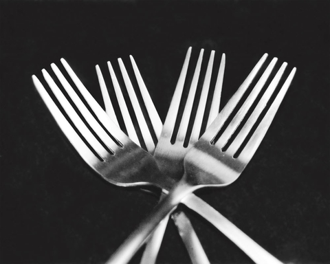Forks - Mike Feeley