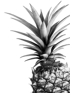 Pineapple (BW) - Lexie Greer - comprar online