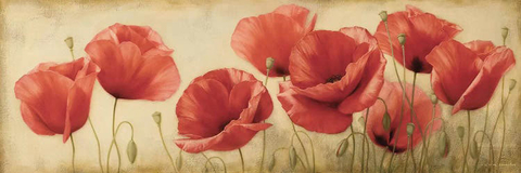 Poppies Grace II - Igor Levashov