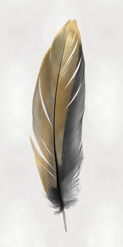 Gold Feather on Silver II - Julia Bosco