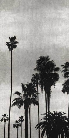 Palm Silhouette on Silver II - Kate Bennett