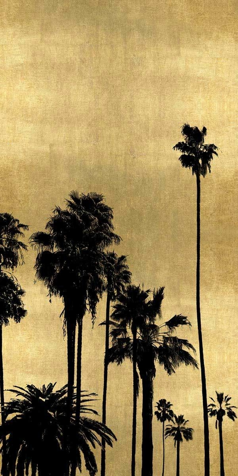 Palm Silhouette on Gold III - Kate Bennett