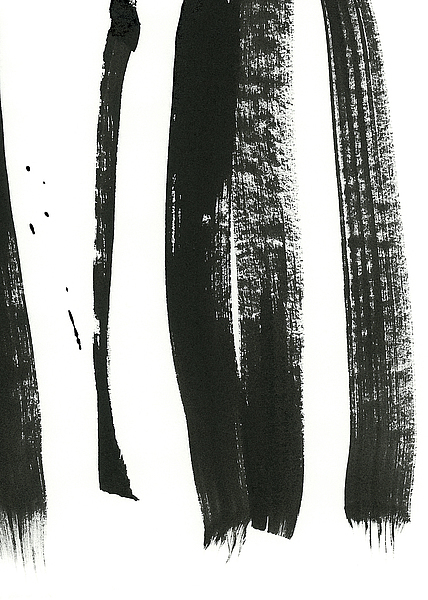 Black on White 3 por Iris Lehnhardt - comprar online