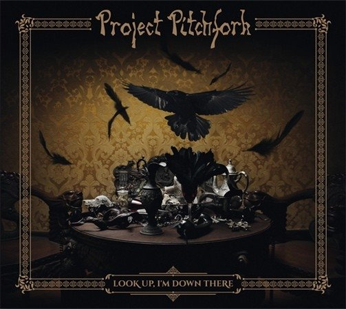 PROJECT PITCHFORK - Look Up, I'm Down There (CD)
