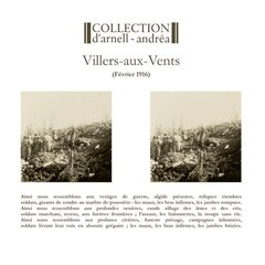 Collection D'Arnell-Andrea - Villers-Aux-Vents (VINIL 2016)
