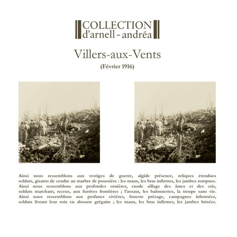 Collection D'Arnell-Andrea ‎– Villers-Aux-Vents (VINIL 2016)