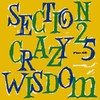 "SECTION 25 - CRAZY WISDOM (12"" VINIL)"