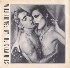 "THE CREATURES (SIOUXSIE SIOUX + BUDGIE) - WILD THINGS (7"" VINIL DUPLO)"