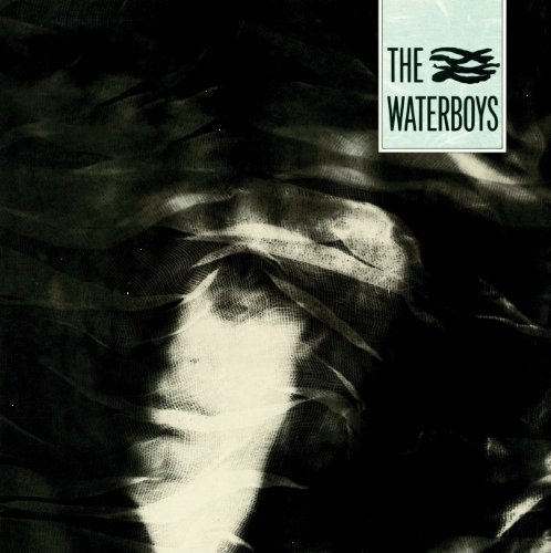 The Waterboys ‎– The Waterboys (VINIL)