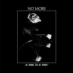 "NO MORE - A ROSE IS A ROSE + 7"" (VINIL)"