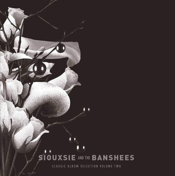SIOUXSIE AND THE BANSHEES - CLASSIC ALBUM SELECTION VOL. 2 (BOX) - comprar online