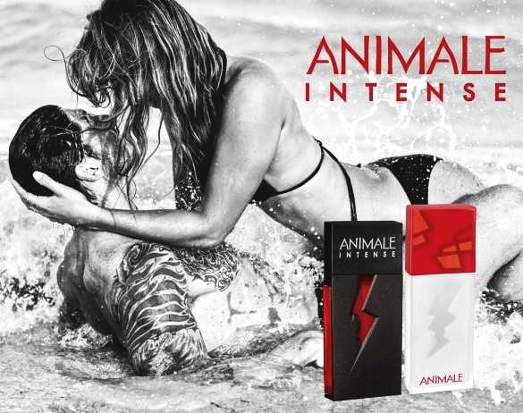 Resultado de imagem para Animale Intense For Men Masculino Eau De Toilette
