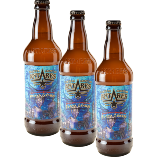 Botella Antares Playa Grande 500ml