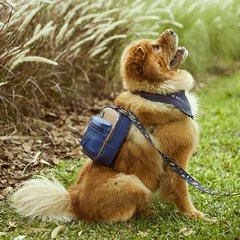 DOG BACKPACK ROCKET BLUE - comprar online