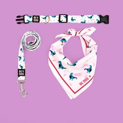 FULL KIT COLLAR - BE REXY WHITE (pañuelo fondo rosa claro)