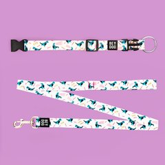 KIT- COLLAR BE REXY WHITE - tienda online