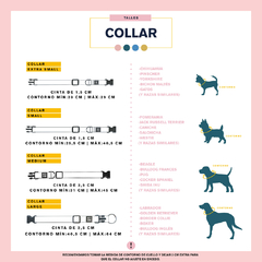 COLLAR LOVE IS LOVE en internet