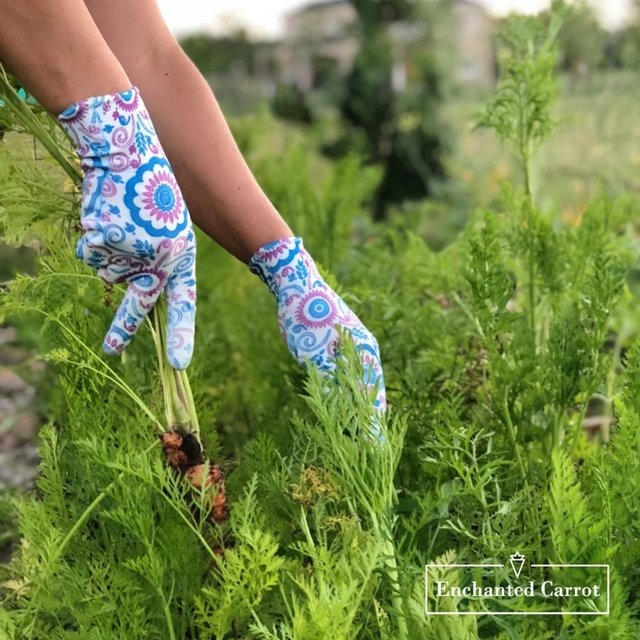 Guantes Poppins - Enchanted Carrot