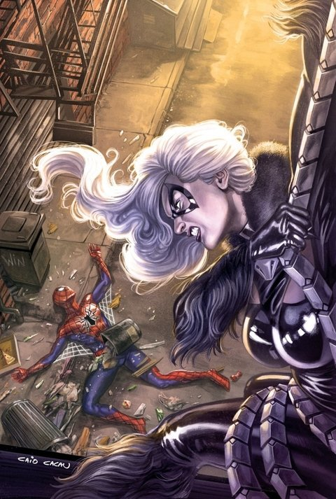 Print A3 - Spider Man x Black Cat - Caio Cacau