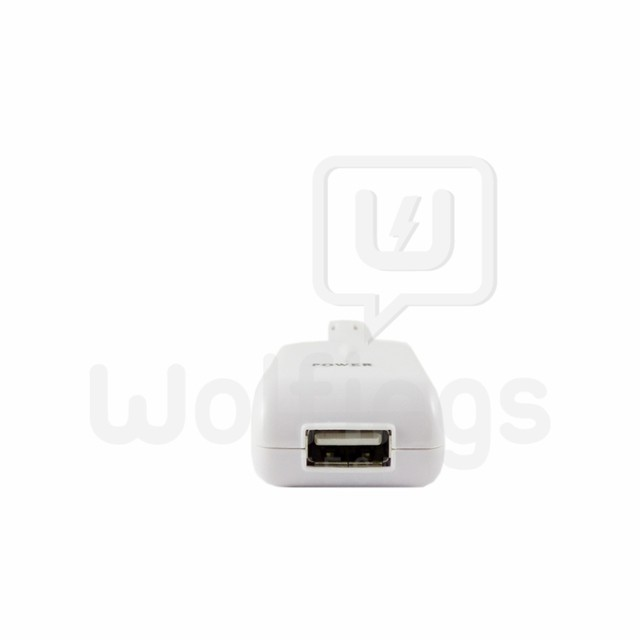 CARGADOR 12V PARA IPOD Y IPHONE DOCK 30 PIN [Cod. ACCA-002] - Wolfings