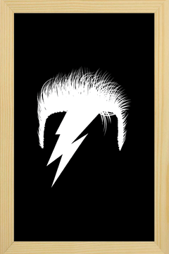 Quadro David Bowie #2 na internet