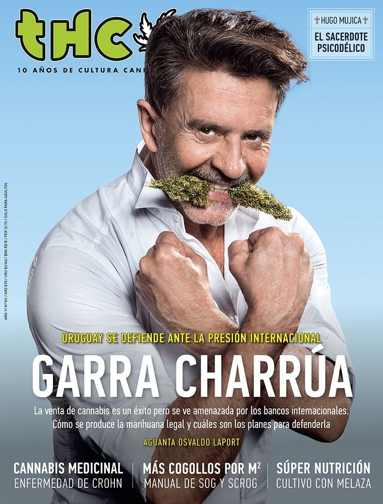Resultado de imagen para osvaldo laport revista marihuana thc