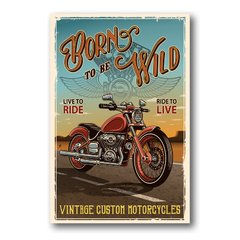 PLACA BORN TO BE WILD - comprar online