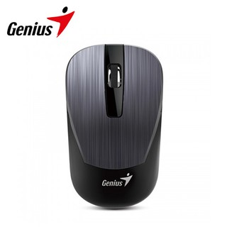 Mouse Genius NX-7015 Blue Eye Gray