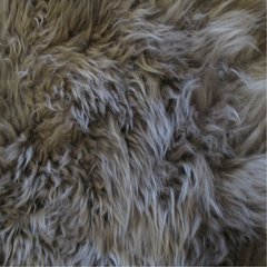 GRAY LAMB RUG on internet