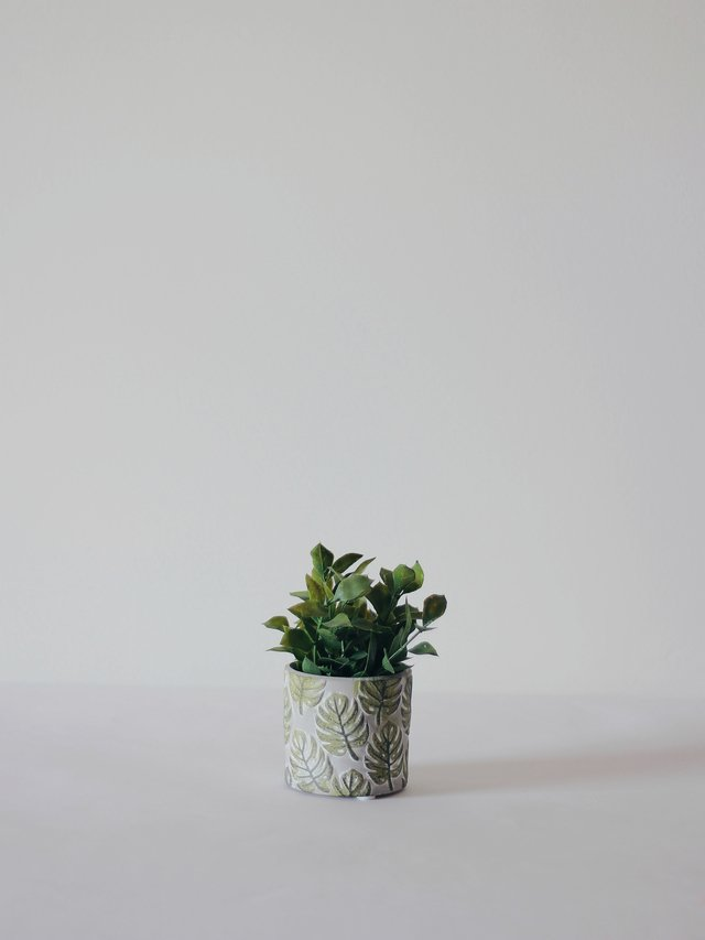 Vaso Mini Monstera