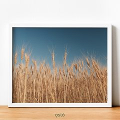 Cuadro GOLDEN WHEAT en internet