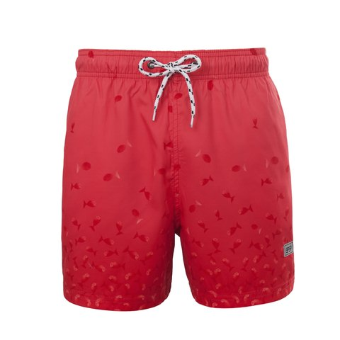 SHORT ANT RED