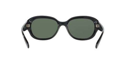 Ray-Ban RB4198 en internet
