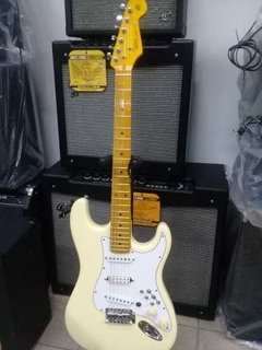 Oportunidad! Tayler Stratocaster Con Ds Pickups Circ T/ Bmay